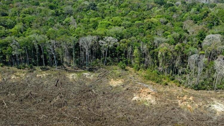 Akılalmaz olay: Amazon ormanlarını Facebook'tan satışa çıkardılar