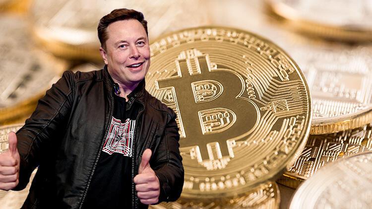 Elon Musk tweet'ine güvendi, bütün varlığını bir gecede kaybetti